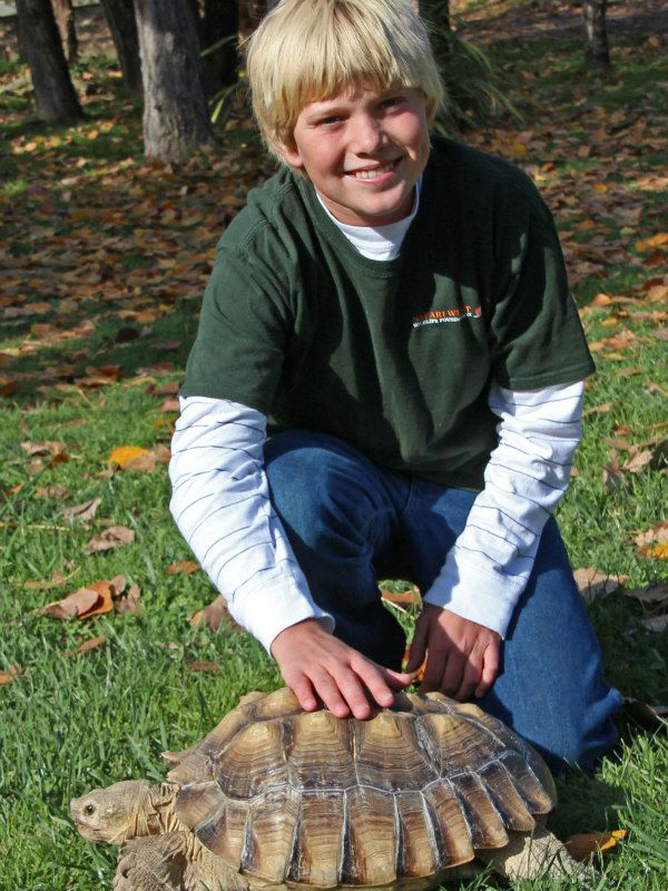 Young boy and turtle at Safari West