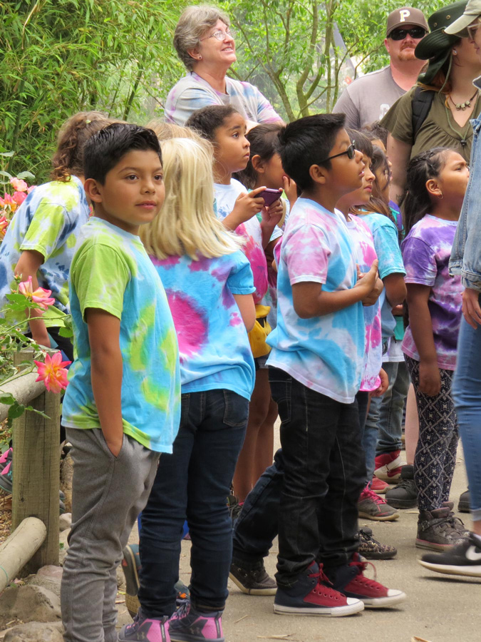 Kids visit Safari West in colorful shirts